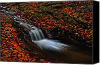 Scenery Pyrography Canvas Prints - Autumn waterfall Canvas Print by Irinel Cirlanaru