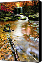 Wet Canvas Prints - Autumnal Waterfall Canvas Print by Meirion Matthias