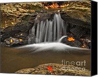 Susan Canvas Prints - Autumns Stream Canvas Print by Susan Candelario