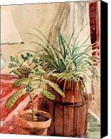 Potted Plants Painting Canvas Prints - Avacado and Spider Plant Canvas Print by Donald Maier