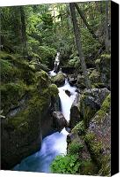 Mountain Stream Canvas Prints - Avalanche Gorge Glacier National Park Canvas Print by Rich Franco