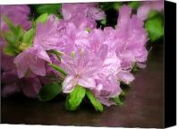 Debbie Canvas Prints - Azalea Bouqet Canvas Print by Deborah  Crew-Johnson