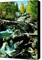Country Photographs Canvas Prints - Babbling Brook Canvas Print by Greg Norrell