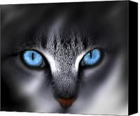 Feline  Canvas Prints - Baby Blues Canvas Print by Cecil Fuselier