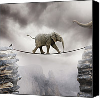 Animals Tapestries Textiles Canvas Prints - Baby Elephant Canvas Print by by Sigi Kolbe