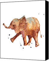 Baby Elephant Canvas Prints - Baby Elephant Print - cute baby elephant Canvas Print by Alison Fennell