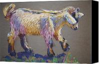 Goat Pastels Canvas Prints - Baby Goat Canvas Print by Barbara Richert