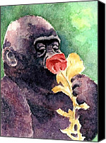 Gorilla Painting Canvas Prints - Baby Gorilla Canvas Print by Chris Martinez