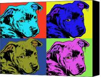 Pitbull Canvas Prints - Baby Pit Face Canvas Print by Dean Russo