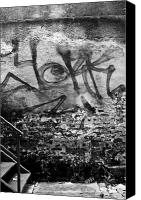 White Seagull Canvas Prints - Back Alley Graffiti  Canvas Print by Dustin K Ryan