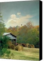 Country Scenes Photo Canvas Prints - Back At The Barn Again Canvas Print by Jan Amiss Photography