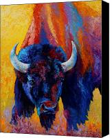 Bison Canvas Prints - Back Off - Bison Canvas Print by Marion Rose