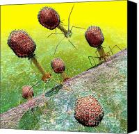 Science Lab Digital Art Canvas Prints - Bacteriophage T4 virus group 2 Canvas Print by Russell Kightley