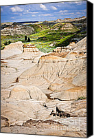 Arid Canvas Prints - Badlands in Alberta Canvas Print by Elena Elisseeva