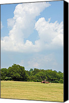Ranches Canvas Prints - Bailing Canvas Print by Jan Amiss Photography