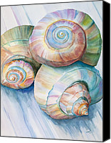 Conch Shells Canvas Prints - Balance in Spirals Watercolor Painting Canvas Print by Michelle Wiarda