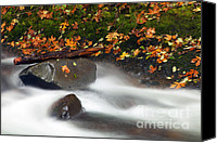 Skate Canvas Prints - Balance of the Seasons Canvas Print by Mike  Dawson