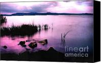 Dewy Painting Canvas Prints - Balaton by night Canvas Print by Odon Czintos