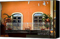 Screen Doors Photo Canvas Prints - Balcony With Palms Canvas Print by Perry Webster