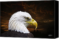 Featured Canvas Prints - Bald Eagle - Freedom and Hope - Artist Cris Hayes Canvas Print by Cris Hayes