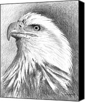 Eagle Drawings Canvas Prints - Bald Eagle Canvas Print by Arline Wagner