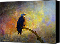 Walker Digital Art Canvas Prints - Bald Eagle Awaiting Sunrise Canvas Print by J Larry Walker