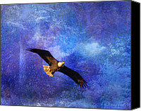 Bald Eagle Canvas Prints - Bald Eagle Bringing A Fish Canvas Print by J Larry Walker