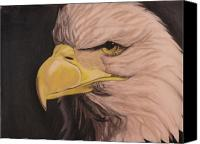 4th July Pastels Canvas Prints - Bald Eagle Canvas Print by Wil Golden
