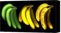 Bananas Canvas Prints - Bananas Canvas Print by Tony Cordoza