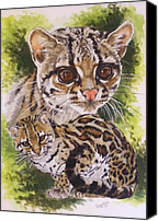 Wildcats Canvas Prints - Bantam Canvas Print by Barbara Keith