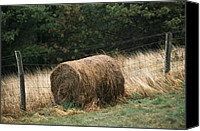 Barbed Wire Fences Photo Canvas Prints - Barbed Wire Fence And Hay Roll Canvas Print by Raymond Gehman