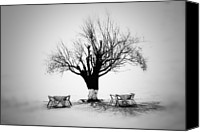 Solitude Canvas Prints - Bare Tree Canvas Print by YongJun Qin