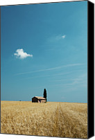 Provence Canvas Prints - Barn In Crop Field Canvas Print by Matteo Colombo