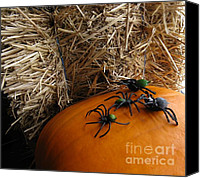 Halloween Scene Canvas Prints - Barn Spiders Canvas Print by Judyann Matthews