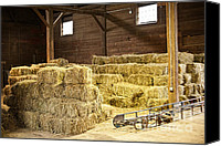 Feed Canvas Prints - Barn with hay bales Canvas Print by Elena Elisseeva