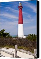 Barnegat Canvas Prints - Barnegat Lighthouse Canvas Print by Anthony Sacco