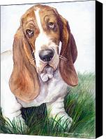 Hound Drawings Canvas Prints - Barney Canvas Print by Mamie Greenfield