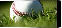 Baseball Canvas Prints - Baseball in Grass Canvas Print by Chris Brannen