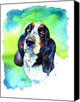 Beagle Canvas Prints - Basett Hound Canvas Print by Christy  Freeman