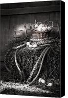 Barn Digital Art Canvas Prints - Basket of eggs on a bale of hay Canvas Print by Sandra Cunningham
