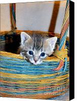Print Special Promotions - Basket Of Love Canvas Print by Michelle Milano