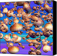 Conch Shells Canvas Prints - Basket Snails in the Sky Canvas Print by East Coast Barrier Islands Betsy A Cutler