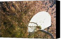 Basketball Canvas Prints - Basketball Hoop Canvas Print by Andersen Ross