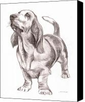 Hound Drawings Canvas Prints - Basset Hound Dog Canvas Print by Nan Wright