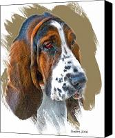 Hound Canvas Prints - Bassett Hound Canvas Print by Larry Linton