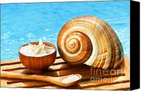 Bathe Canvas Prints - Bath salts and sea shell by the pool Canvas Print by Sandra Cunningham