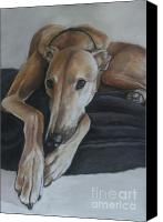 Greyhound Canvas Prints - Bauregard Canvas Print by Charlotte Yealey