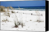 Beach Photograph Photo Canvas Prints - Beach No. 5 Canvas Print by Toni Hopper