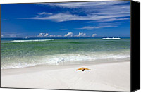 Postcard Photo Canvas Prints - Beach Splendour Canvas Print by Janet Fikar