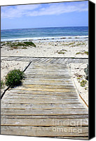 Boardwalks Photo Canvas Prints - Beach Walk Canvas Print by Carol Groenen